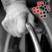 Dementia Awareness Logo