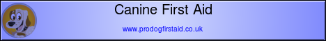 Canine First Aid Level 2 (VTQ)