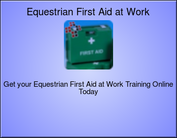 Equestrian First Aid at Work Level 3 (VTQ)