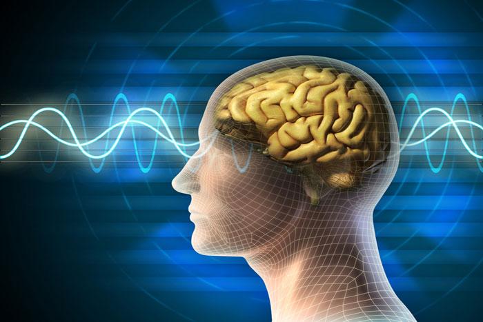 Epilepsy Awareness (VTQ)