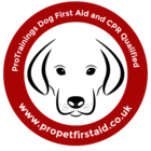 Dog First Aid Qualified Stickers - pack of 2