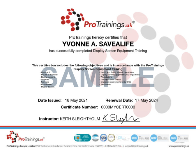 Sample International Display Screen Equipment (VTQ) Online Certificate