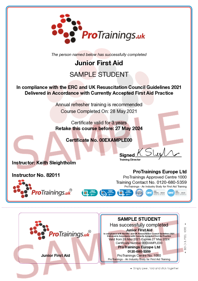 Sample Junior First Aid Classroom Certificate