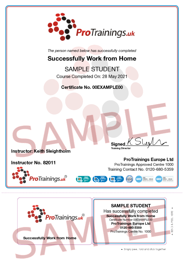 Sample Successfully Work from Home Classroom Certificate