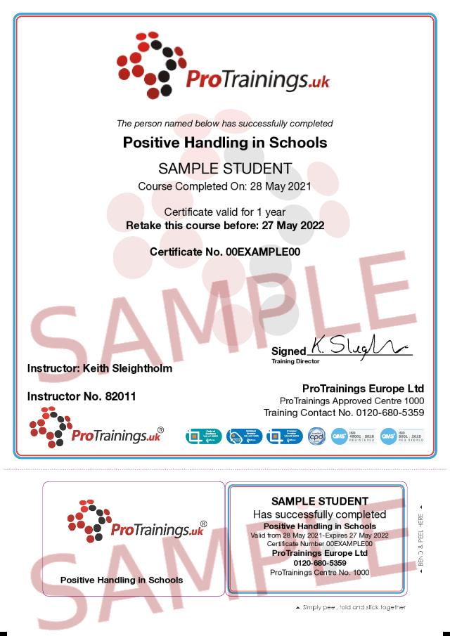 Sample Positive Handling in Schools Classroom Certificate