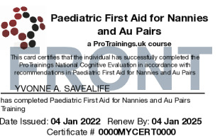Sample Paediatric First Aid for Nannies and Au Pairs Card Front