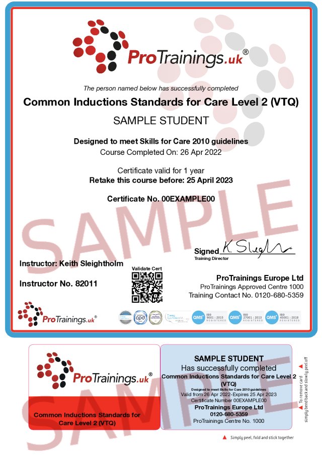 Sample Common Inductions Standards Classroom Certificate