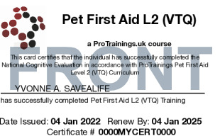 Sample Pet First Aid Card Front