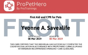 Sample Cat and Dog First Aid Card Front