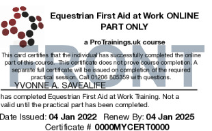 Sample Equestrian First Aid at Work Level 3 (VTQ) Blended Part One Card Front