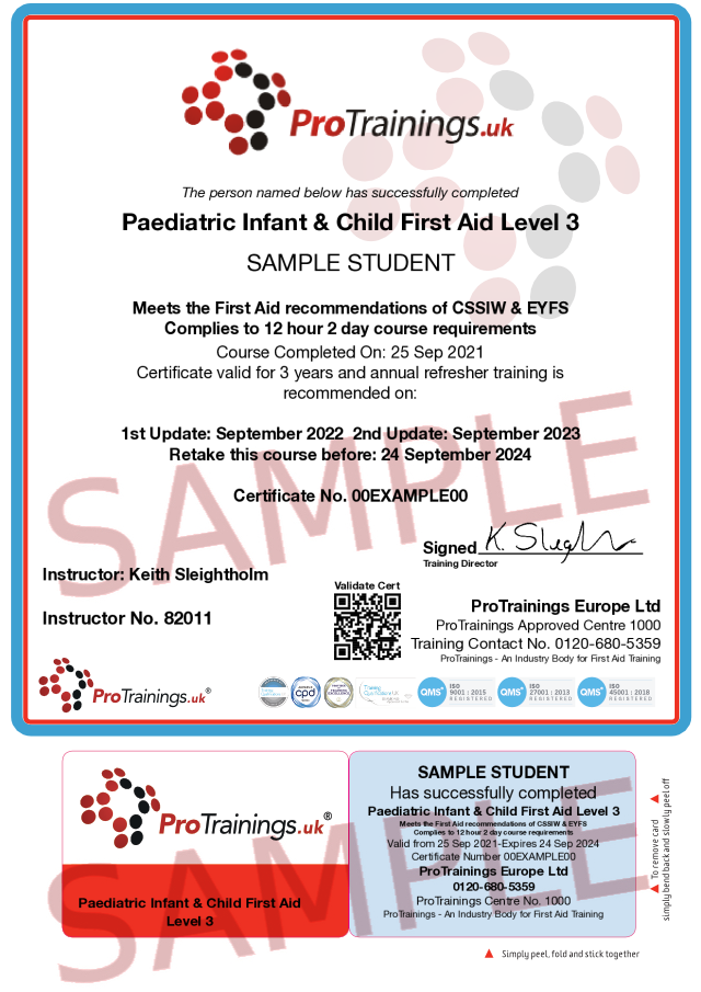 Sample Paediatric (Blended DAY 2) 12 Hour Infant / Child First Aid Level 3 (VTQ) - PFA Classroom Certificate