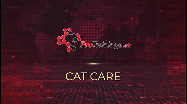 Cat Care Introduction