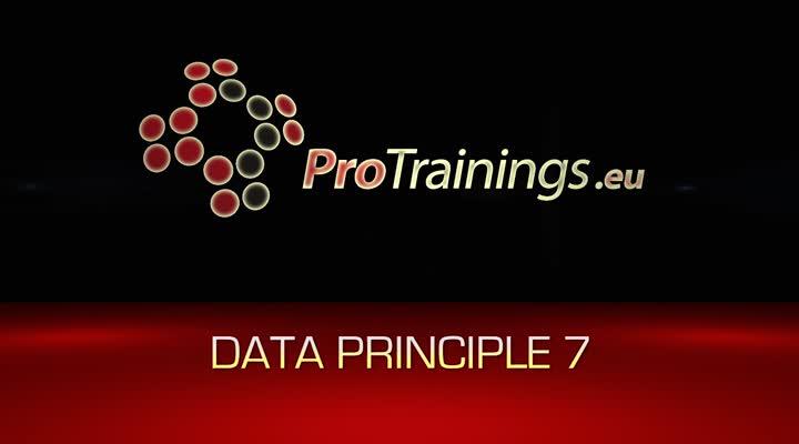 Data principle 7