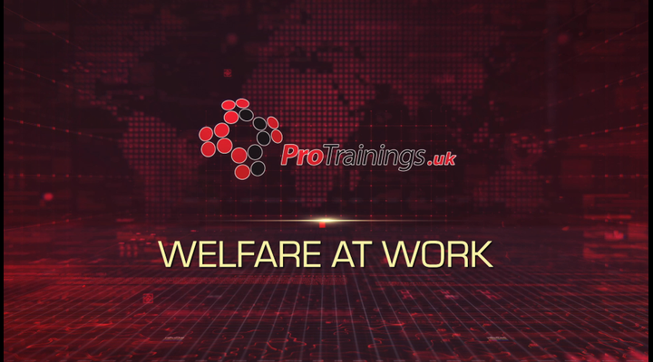 Welfare At Work
