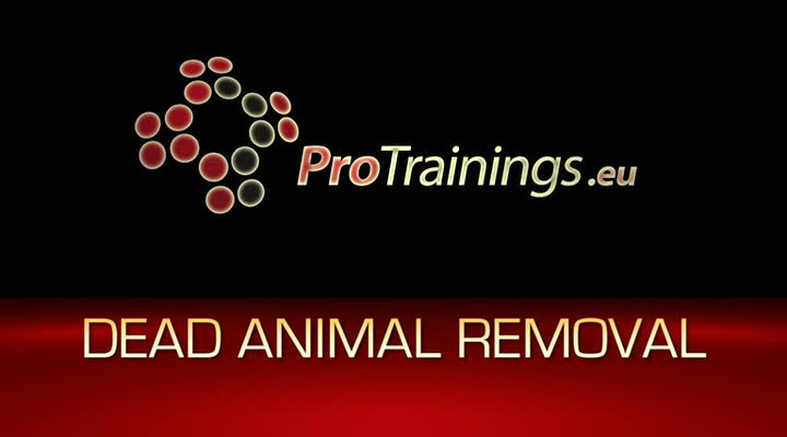 Dead animal removal and risks