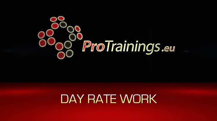 Do you want day rate work?