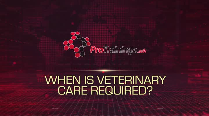 When is Veterinary Care Required?