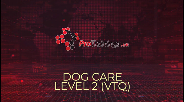 Dog Care Overview Course
