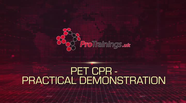 Pet CPR Practical Demonstration