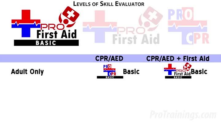 Skill Evaluator Details
