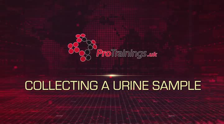 Collecting a Urine Sample