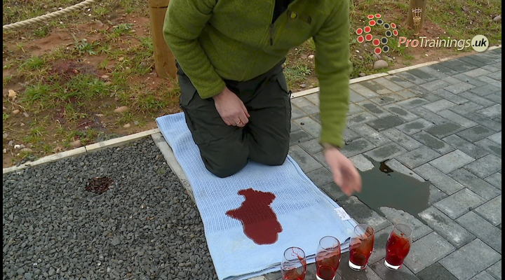 Blood loss - a practical demonstration