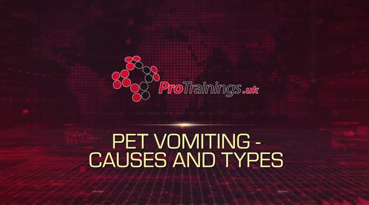 Different Types and Causes of Vomiting