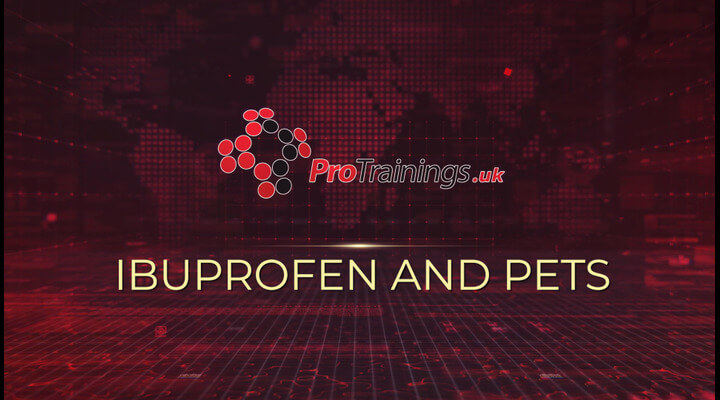 Ibuprofen and pets