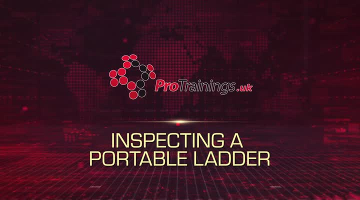 Inspecting a Portable Ladder