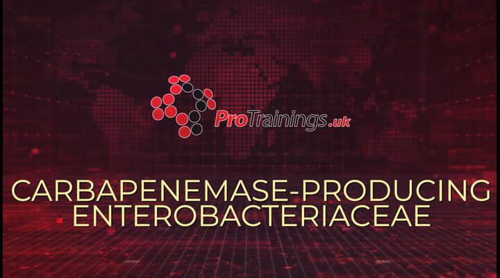 Carbapenemase-producing Enterobacteriaceae or CPE