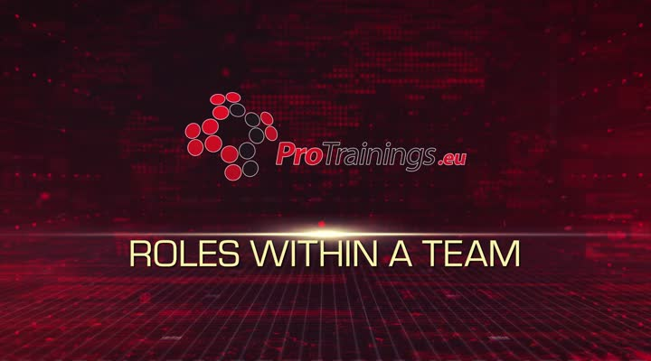 Roles Within a Team
