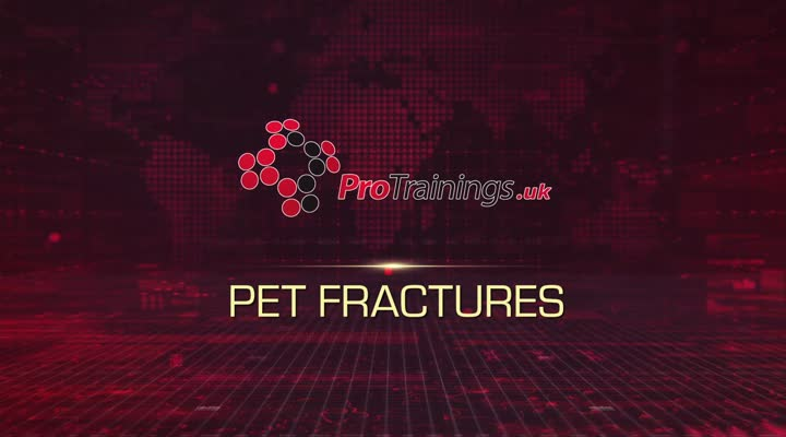 Pet fractures treatment