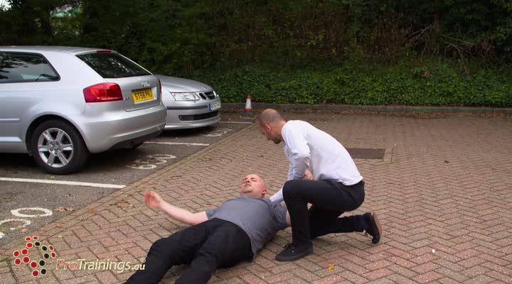 Assisting a falling passenger