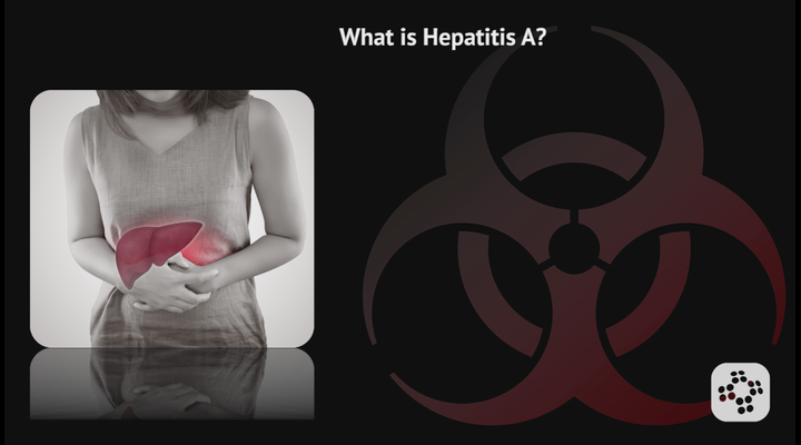 What is Hepatitis A