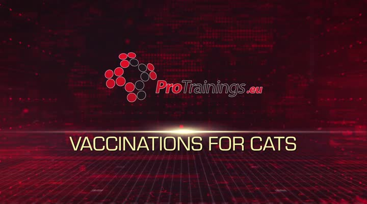 Vaccinations for cats - message from our vet