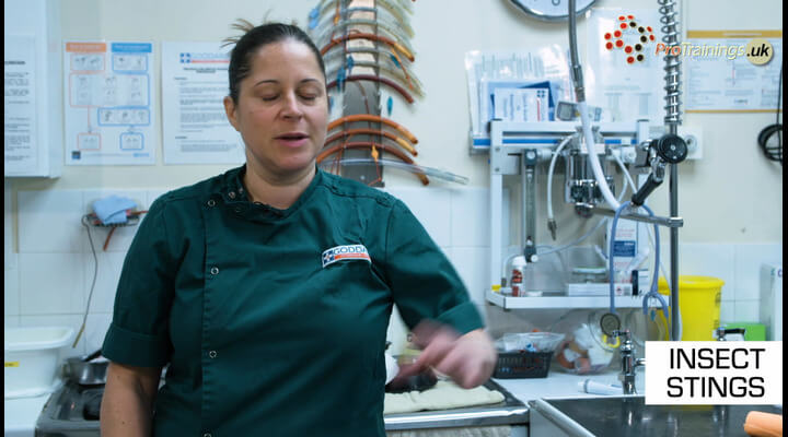 Insect stings