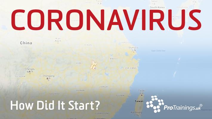 How did Coronavirus start?