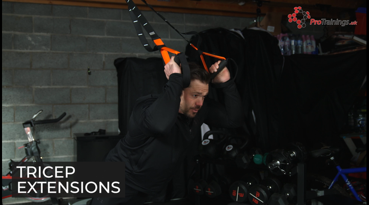 Suspension system - Tricep extensions