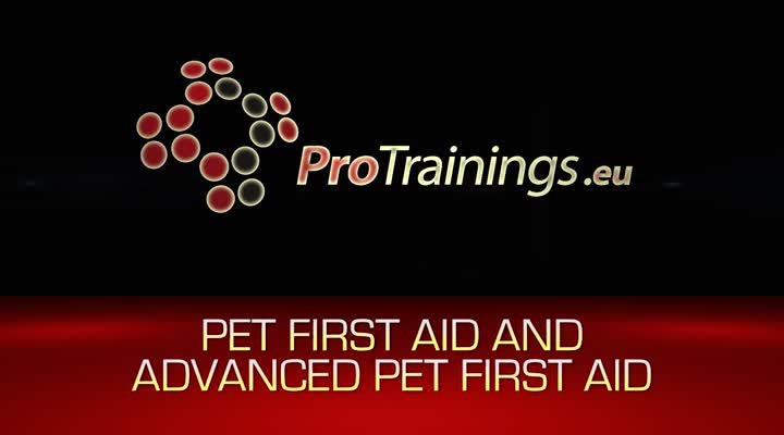 Pet First Aid and Advanced Pet First Aid Instructor